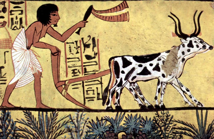 Ancient Egyptian Burial Practices